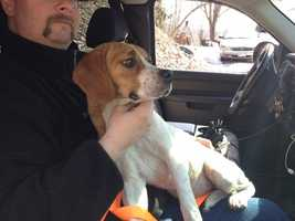 Baby roamed around the charred debris in the single-digit overnight temperatures until a volunteer firefighter's fiancee picked up the dog in the morning.
