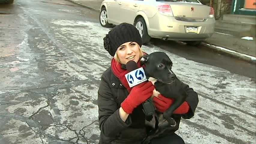 You've seen Janelle Hall over the years at WTAE. She's done it all, from a reporter in the field ...