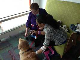 Erica visits with Shayna and the dog's owner, Joan Stein.