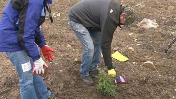 Flight 93 Memorial Tree Planting