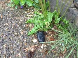A suspicious device found in the South Side Slopes.