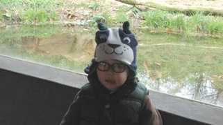 A picture of 2-year-old Maddox Derkosh taken at the Pittsburgh Zoo & PPG Aquarium on Nov. 4, 2012.