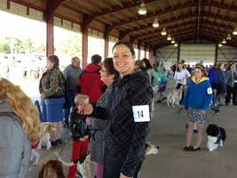 Another owner,handler, breeder. She is from Homer City and did a story on her taking Treeing Walker Coonhounds to Westminster. She had won there the last several years with Plotts, Blueticks and American English Coonhounds .