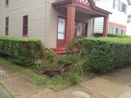 Police said a 5-year-old drove a vehicle into some bushes on Washington Street in Heidelberg.