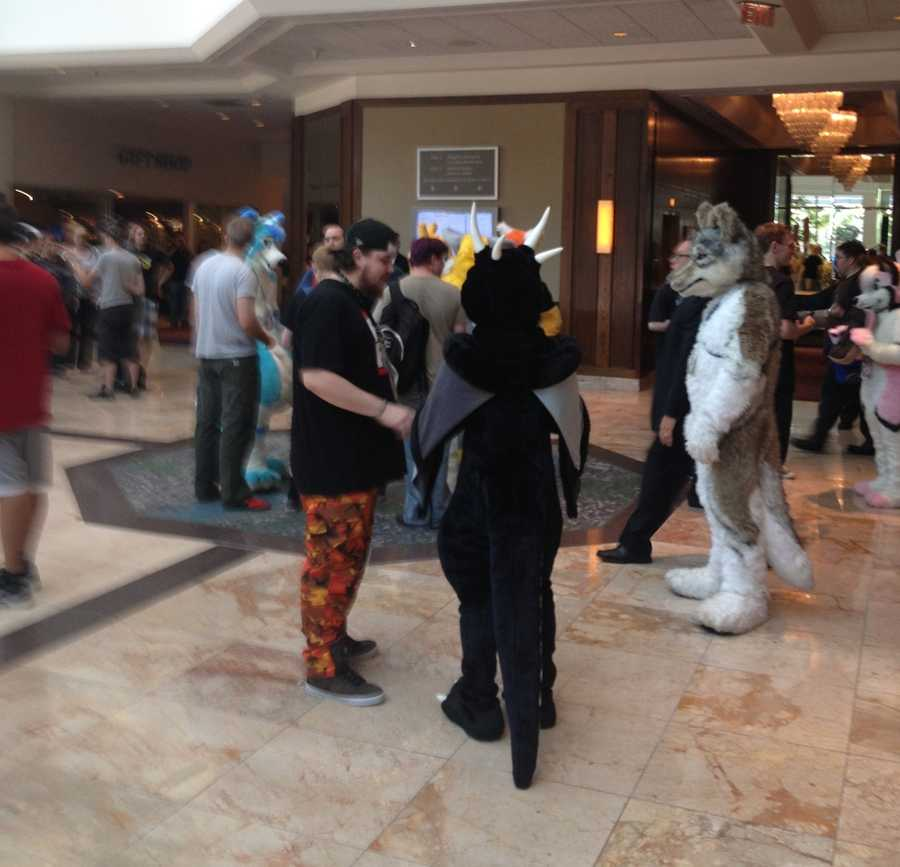 The furries can often be seen hanging out in the lobby of the Westin Convention Center Hotel.