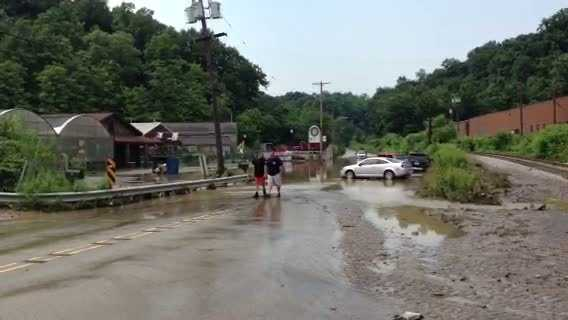 Flooded cars at Chapon's Greenhouse on Streets Run Road in Baldwin Borough