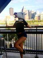 She explained that the mask is something they like to bring along whenever they travel and take funny pictures with to post on social media. When fans sitting behind them suggested they try to get on the JumboTron, San Dimas put on the mask and started dancing in the aisle. (Video: Adult film star dances in unicorn mask at PNC Park)