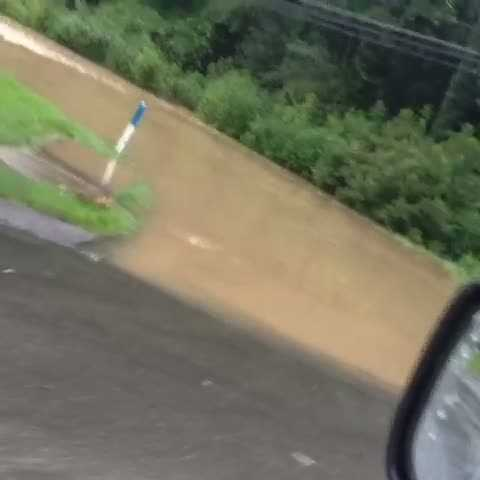Flooding on Logans Ferry Road in Monroeville. (Watch the video)