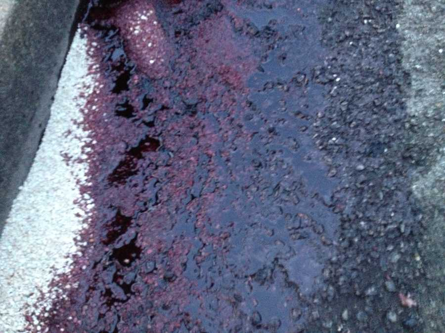 Here is the sticky substance that was left on the road after leaking from the tractor-trailer that crashed.