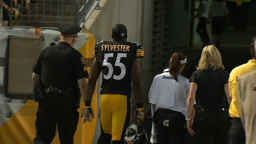 Stevenson Sylvester