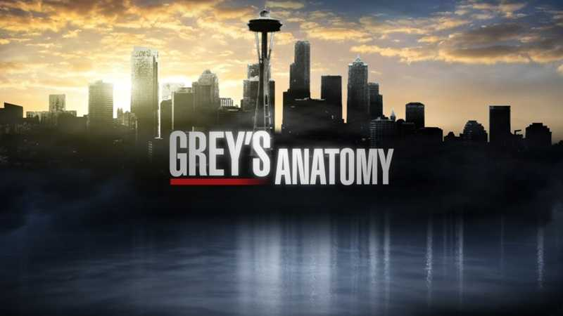 """(WATCH VIDEO PREVIEW) """"Grey's Anatomy"""" is considered one of the great television shows of our time. The medical drama, moving into its tenth season, follows the personal and professional lives of a group of doctors at Grey Sloan Memorial Hospital in Seattle as they deal with the lives of their patients and their relationships with each other. Premieres Thursday, September 26th @ 10pm"""