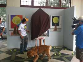 "Tom Mosser's ""A Golden Retriever at the Museum"" sparked a worldwide phenomenon, and now the artist has created another painting starring some more four-legged friends."