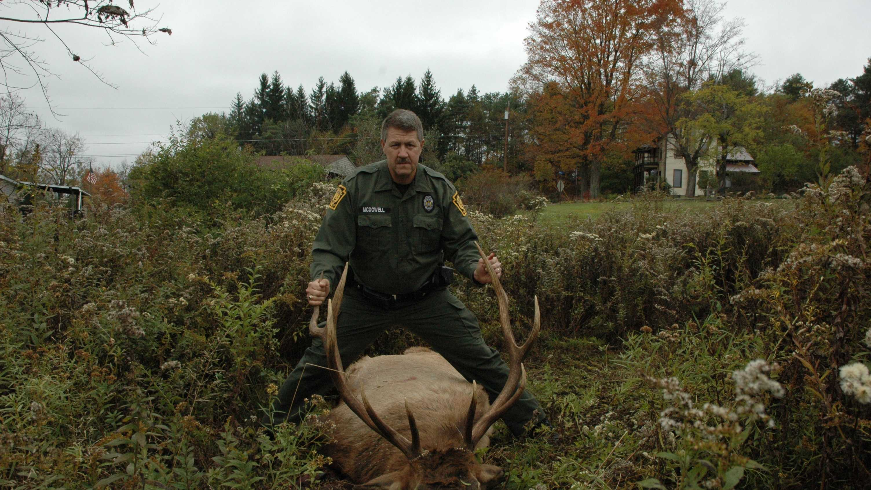 elk shot in Elk County