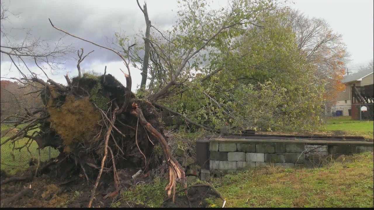 img-Rare November thunderstorm hits western Pa