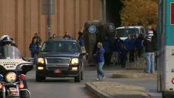 Five elephants strolled the streets from Liberty Avenue to Consol Energy Center.