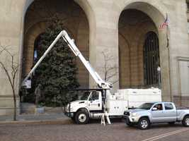 The huge tree outside the City-County Building in downtown Pittsburgh is going up once again for the holiday season.