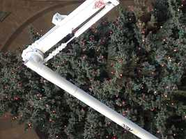 City workers are preparing the tree for Pittsburgh's annual Light Up Night on Nov. 22.