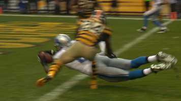Calvin Johnson lays out for a touchdown
