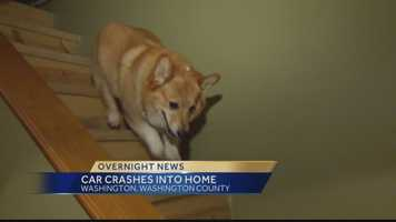 The crash sent concrete blocks crashing around the area where a couple's dog sleeps.