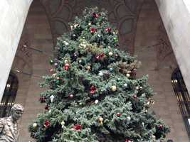 The huge Christmas tree outside the City-County Building is an annual tradition in downtown Pittsburgh.