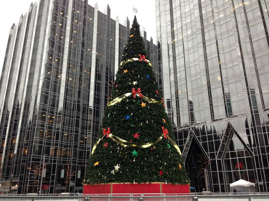 A Christmas tree is set up in the middle of the Rink at PPG Place.