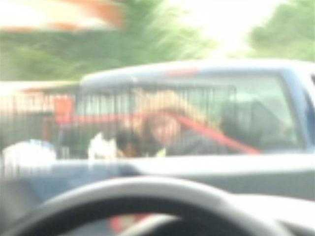#6 Girl Rides in Cage in Truck on PA Turnpike - A woman and her boyfriend go before a judge for allowing her 10-year-old daughter to ride in a cage with a dog in the bed of a pickup truck on the Pennsylvania Turnpike. VIEW STORY