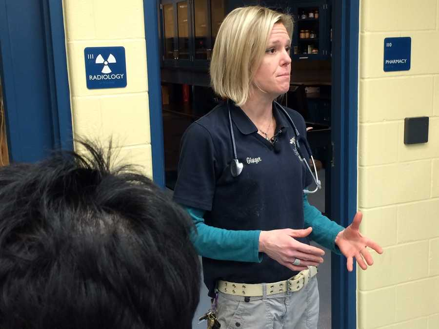 Dr. Ginger Sturgeon, head veterinarian at the Pittsburgh Zoo & PPG Aquarium, explains that cheetah examinations are necessary to make sure the new arrivals are healthy.