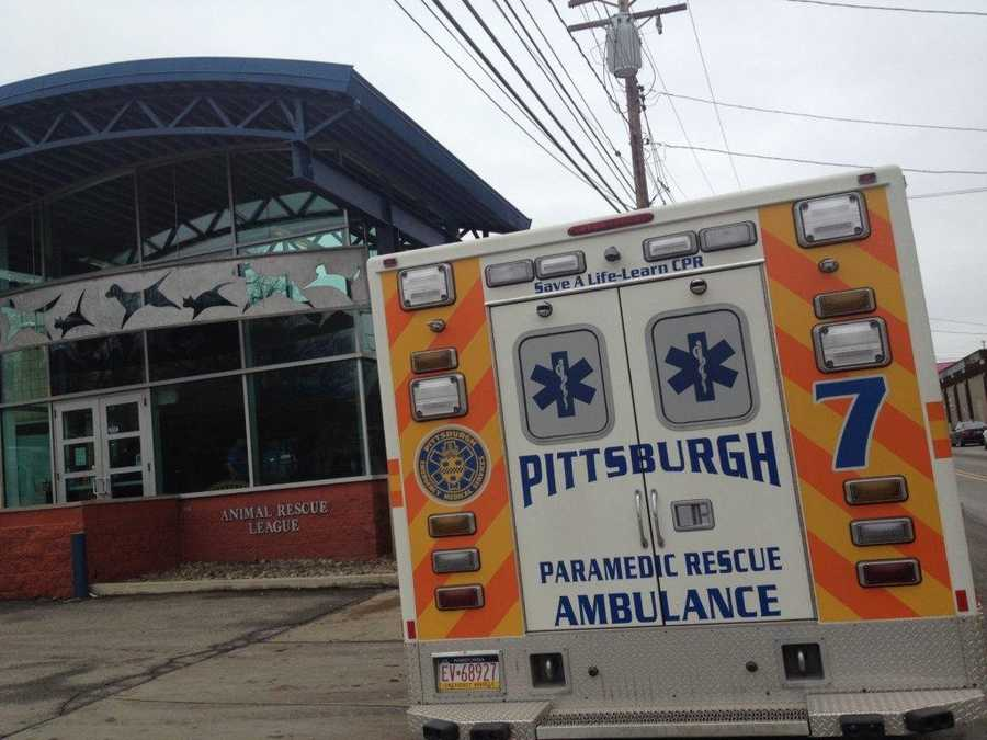 """The Fraternal Association of Professional Paramedics and the City of Pittsburgh Bureau of Emergency Medical Services are announcing that """"Paramedics for Pets"""" drive to collect donations for the Animal Rescue League Shelter and Wildlife Center of Pittsburgh has been a success."""