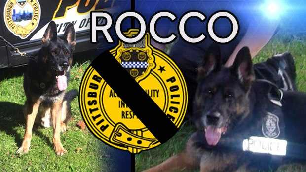 Rocco Fallen Officer IMG