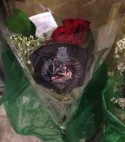 Flowers were left for Rocco at the Pittsburgh Veterinary Specialty & Emergency Center in Ohio Township, where the dog died.