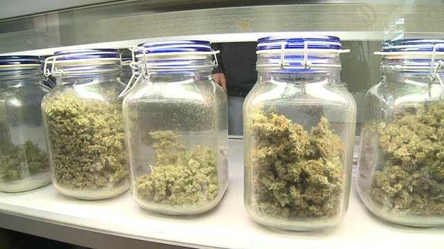 Mass medical marijuana