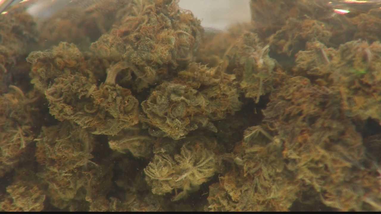 img-marijuana 01