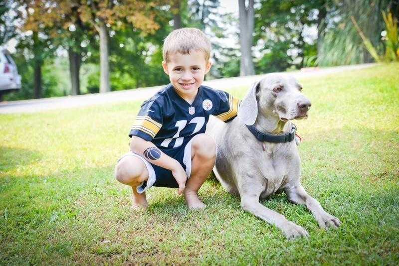 Anchor Janelle Hall's dog Tucker.