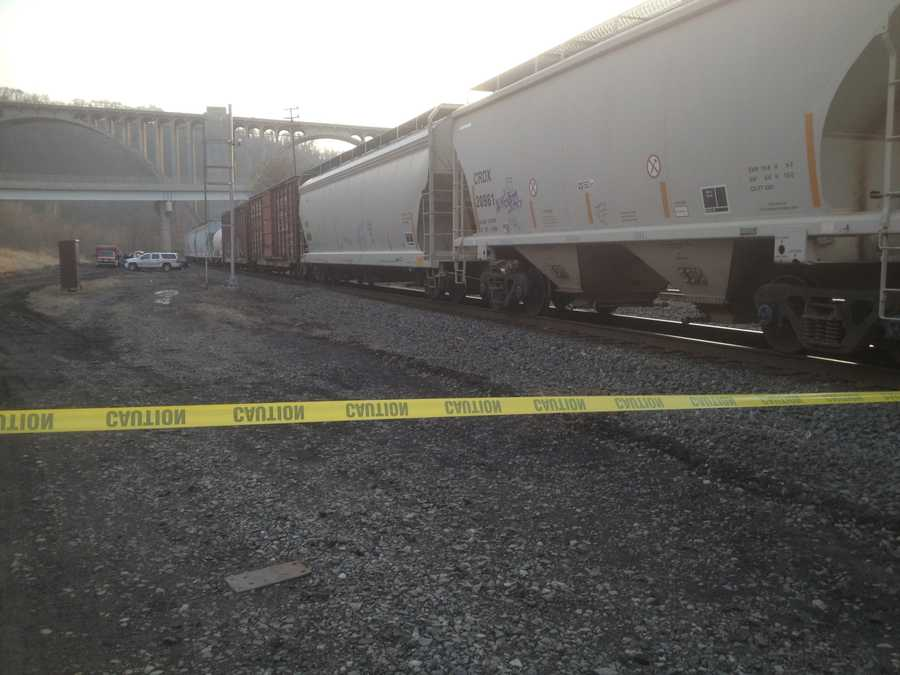 Lance Wentzel was struck by a train while searching for a missing woman along the railroad tracks near the Westinghouse Bridge in North Versailles.