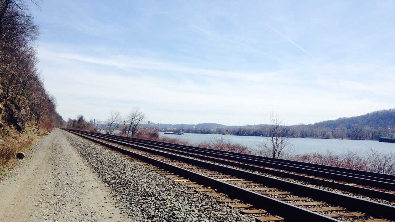 Skeletal remains were recovered from the bank of the Ohio River in Avalon, not far from some railroad tracks.