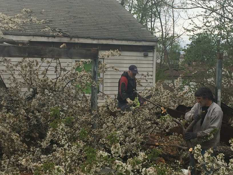 Barbara Kiss, 57, was outside when a strong wind gust brought the tree down in her Bailey Avenue backyard about 10 a.m. Tuesday.