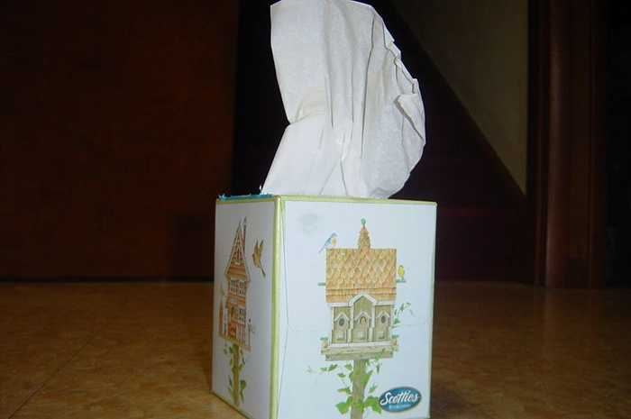 Are Tissues subject to a Sales Tax?  Click Next to check your answer...