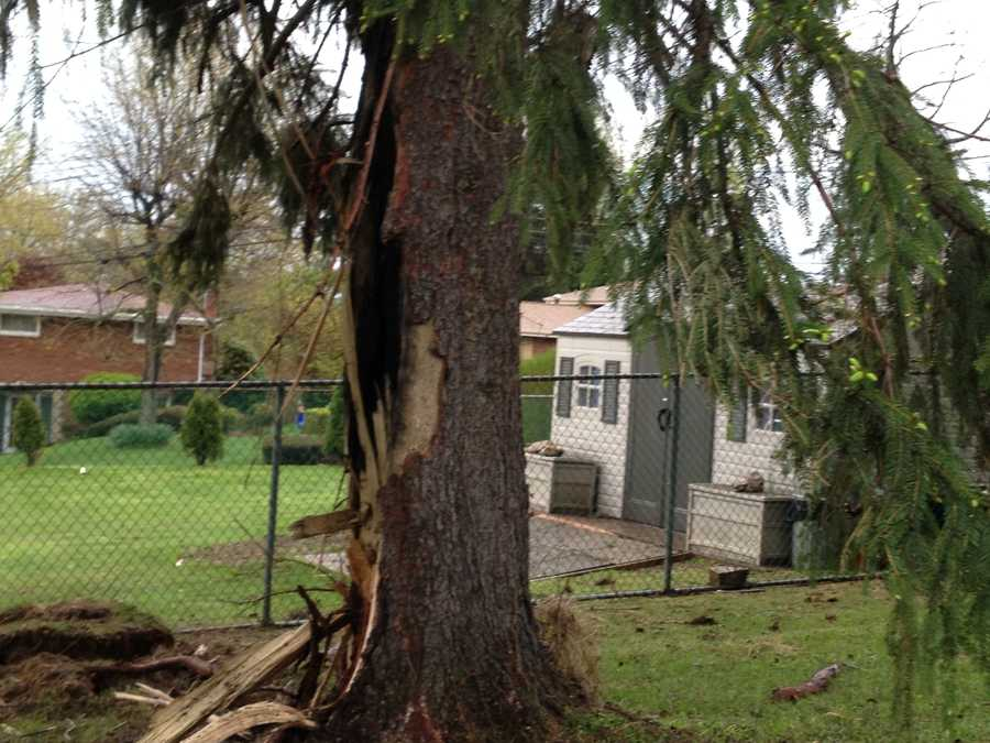 The lightning strike happened in the backyard of a house on Jamison Lane in Monroeville.