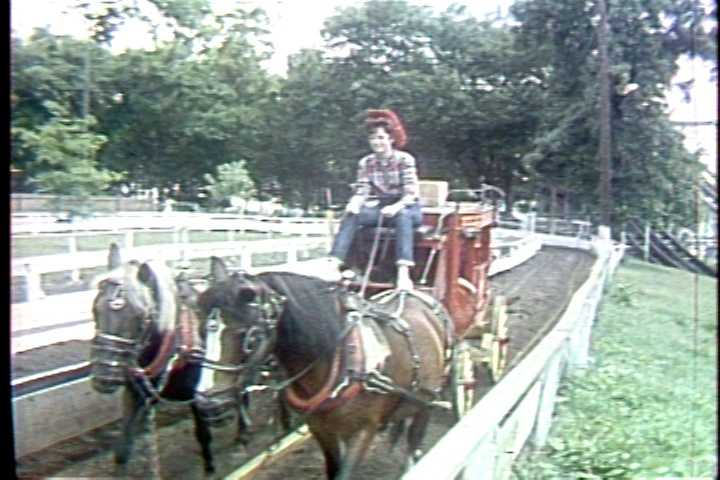 A horse-drawn wagon ride in the 1960s.