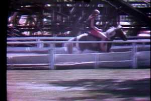 Kennywood once had a Pony Track in the area where the Log Jammer is now. Here's a picture from 1972.