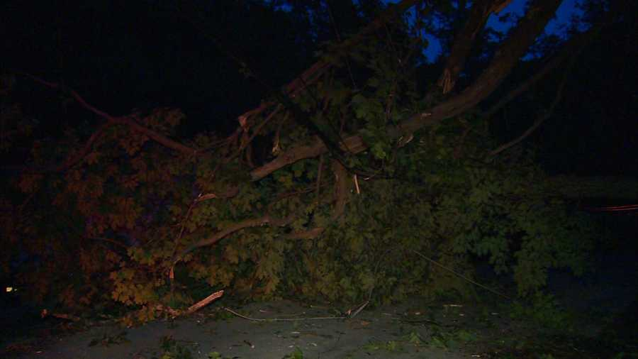 A tree landed across Abers Creek Road in Monroeville after being knocked down during the storm.