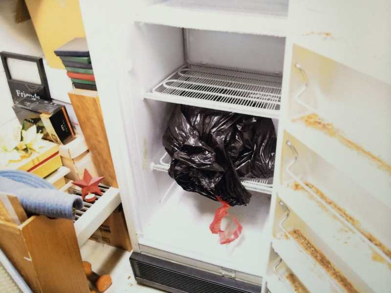 Pictures of the aforementioned freezer and the bag in which the evidence was placed.