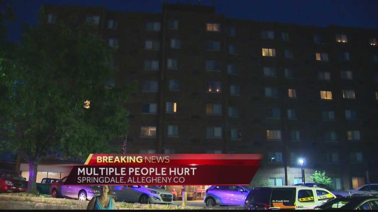 Multiple people stabbed in Springdale Borough