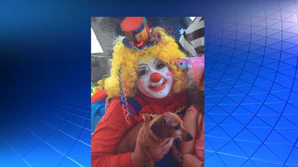 Teeny the dog was used in Glitter Dot and Dapper clown shows.