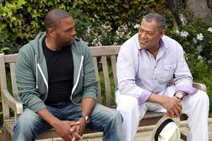 """ABC's new family comedy, """"black-ish,"""" takes a fun yet bold look at one man's determination to establish a sense of cultural identity for his family. The series stars Anthony Anderson, Tracee Ellis Ross and special guest star Laurence Fishburne. (ABC/Adam Taylor)"""