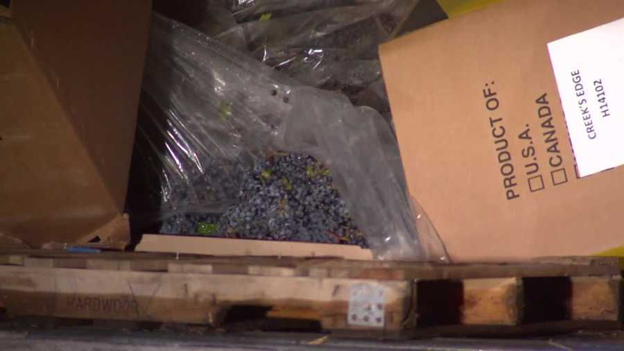A load of grapes was spilled in the crash on I-70.
