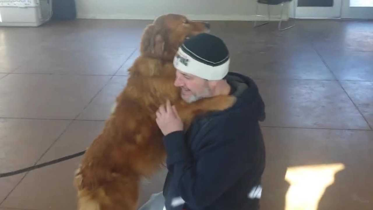 Family reunited with lost family dog after nearly 2 years of separation.