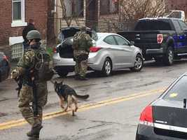 Pittsburgh Police SWAT now with K9s on scene.
