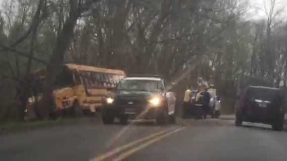 A school bus crashes into a tree on Logan's Ferry Road in Murrysville on Friday morning.