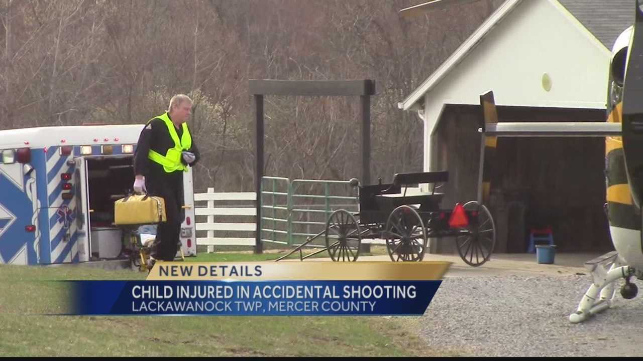 A 9-year-old girl was injured in what state police say was an accidental shooting at a farm in Lackawanna Township, Mercer County.